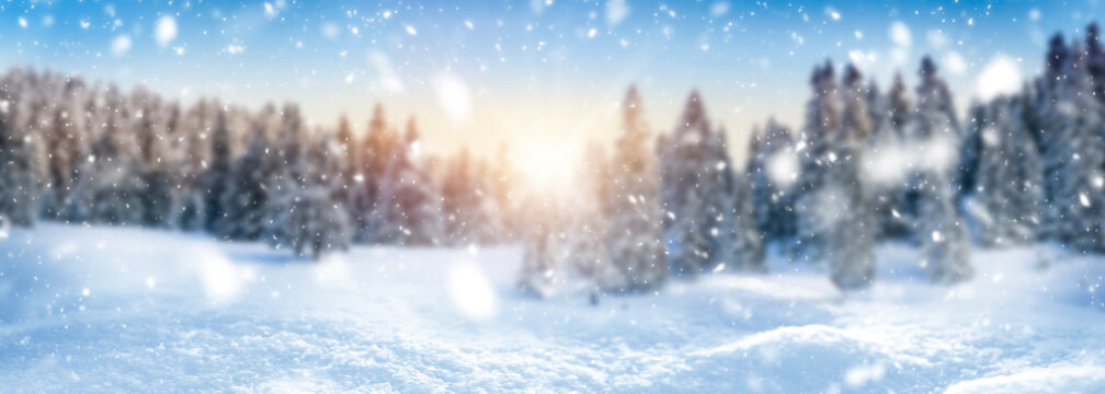 Winter landscape background and snow, frost wide panorama with free space for your text