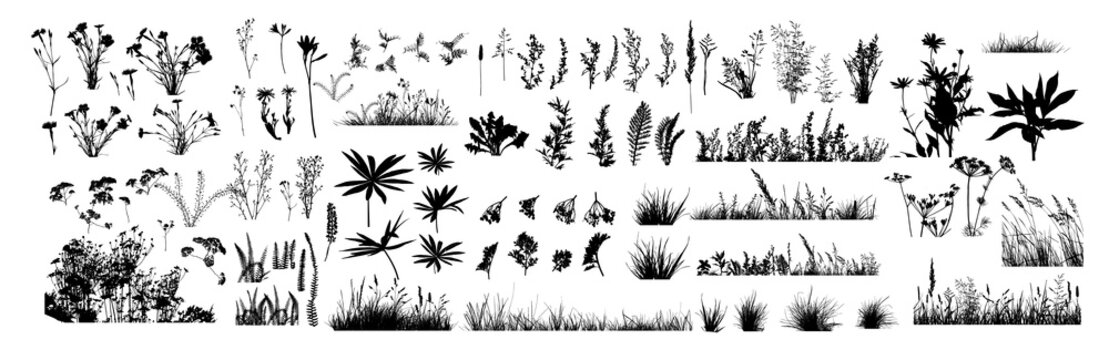 The silhouette of the grass big set. Vector illustration
