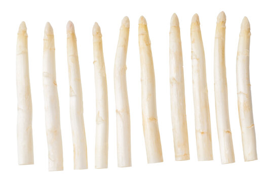 Fresh white asparagus isolated on white background.