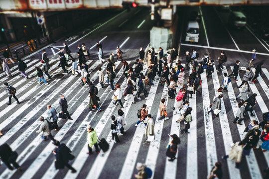 大阪の横断歩道