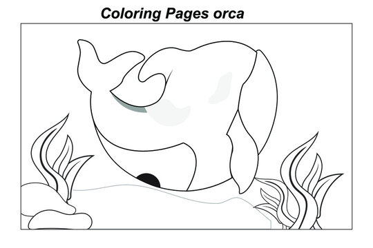 Coloring pages. Marine wild animals. little cute baby orca underwater. illustration in a cartoon style for a coloring book