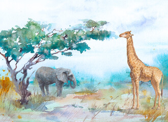 Obraz Watercolor landscape: african savannah. Hand painted nature view with trees, clouds sky and animals. Beautiful safari scene - fototapety do salonu