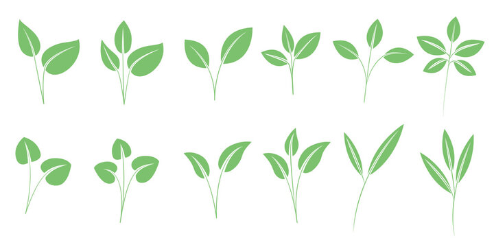 Set of green leaves illustration. green icons for ecology, green, recycling and bio design. グリーンリーフイラスト、新芽アイコン、グリーン、エコロジー、リサイクルデザイン