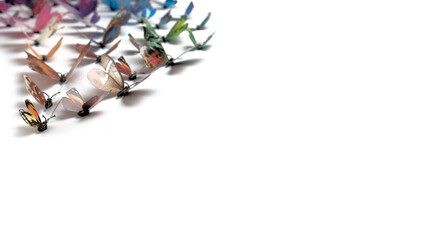 Fototapeta a flock of different colored butterflies on white, a live panorama, many colorful butterflies lined up in a migratory wedge and fly in the direction of