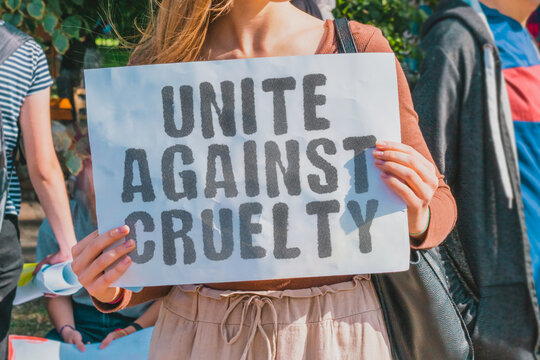 "The phrase "" Unite against cruelty "" drawn on a paper in woman hands. Caucasian woman with light hair holds a cardboard with an inscription. Cruel. Defend. Illegal. Law. Defending. Abuse. Abuser"