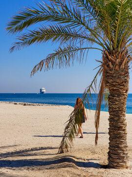 spiaggia a sir bani yas