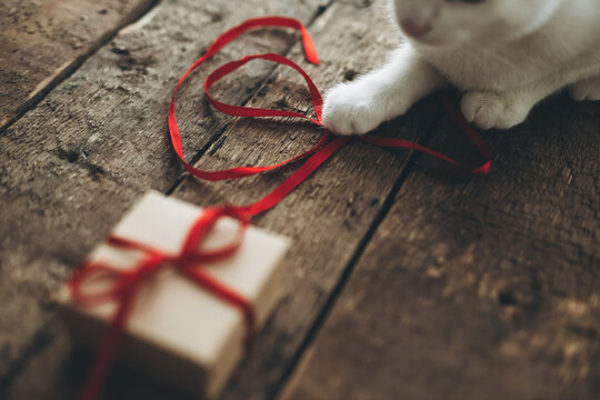 Cute cat playing with red ribbon from stylish craft gift box on rustic wood. Happy Valentines day