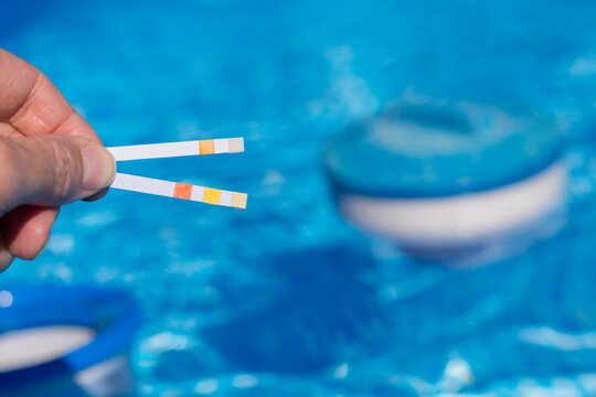 Person Measuring In The Pool With Test Strips Important Values