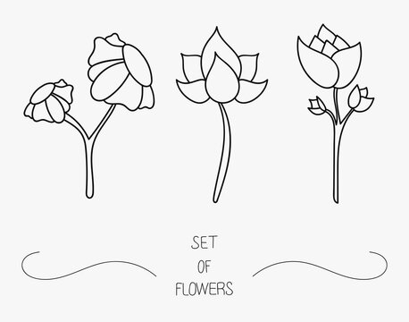 Set of flower icons on white background, isolated. Beautiful minimalist whit floral symbol with no fill and stem. Decoration for luxuty boho design