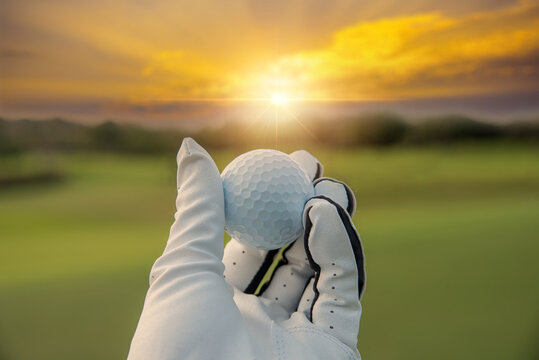 golfer showing golf ball on hand holding with green grass golf course sunlight rays background sunlight.