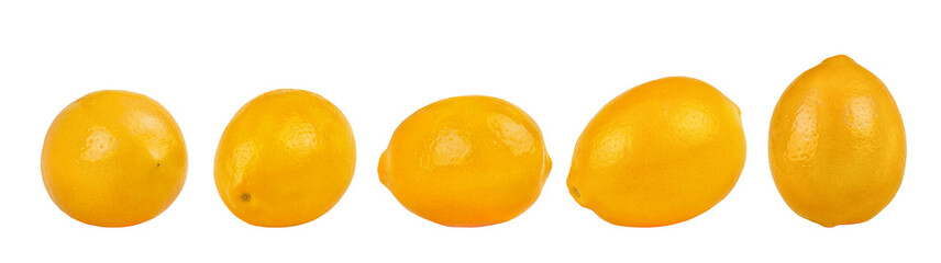 Lemon collection isolated on white background.