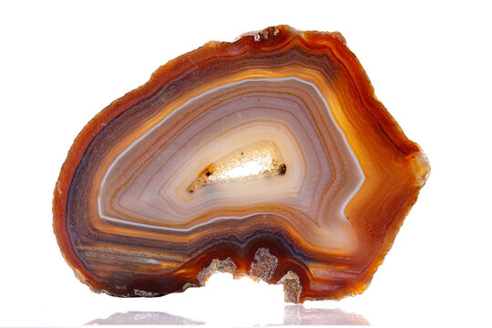macro mineral stone agate on a white background