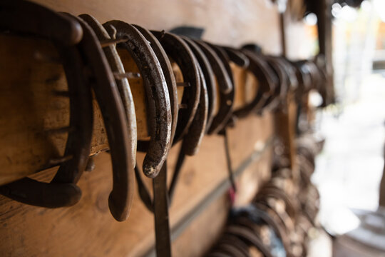 Horseshoes hanging from rack in stable tack room
