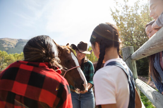 Girls watching female rancher feed horse in sunny ranch paddock