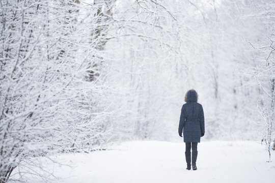 Young adult woman slowly walking on snowy trail at natural park in white winter day after blizzard. Fresh snow. Spending time alone in nature. Peaceful atmosphere. Back view.