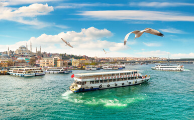 Fototapeta View of Suleymaniye Mosque