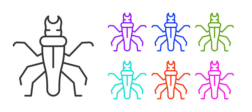Black line Termite icon isolated on white background. Set icons colorful. Vector.