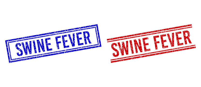 SWINE FEVER rubber watermarks with grunge texture. Vectors designed with double lines, in blue and red variants. Tag placed inside double rectangle frame and parallel lines.