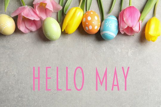 Hello May. Flat lay composition of painted Easter eggs and spring flowers on grey background