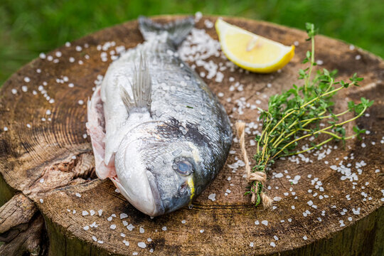 Raw sea bream with salt and lemon