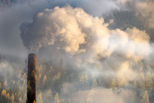 Double exposure of chimney smoke and forest.