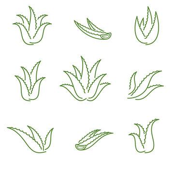Aloe Vera set. Collection icon Aloe Vera. Vector