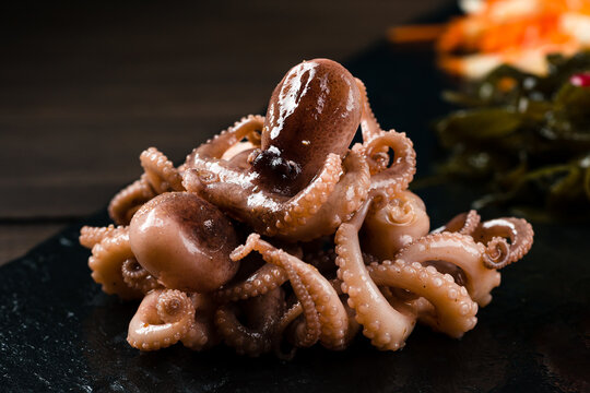 raw octopus ready to eat. Creative food diet healthy eating concept photo of delicious baby octopus seafood. Close up of raw octopus. Mediterranean seafood delicacy.