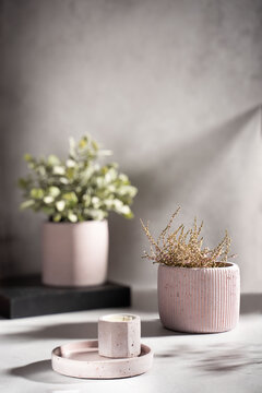 Creative composition with burning scented soy wax candles in a concrete candlestick and a flower pot of dried flowers on a gray background. Eco-friendly. Natural. Shadows on the wall.