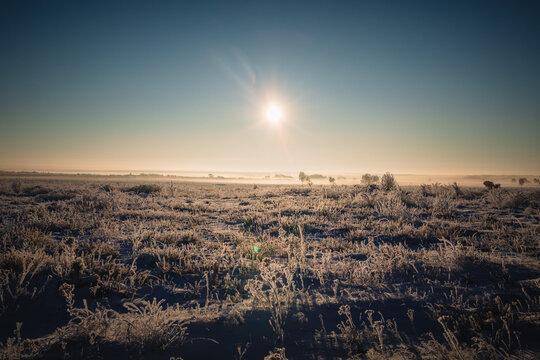 Sonnenaufgang Winter Winterlandschaft Lüneburger Heide Niedersachsen Deutschland