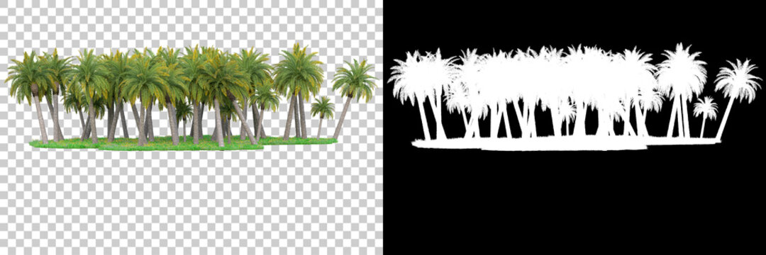 Palm trees isolated with mask. Image useful for banners, posters or photo manipulations. 3d rendering. Illustration
