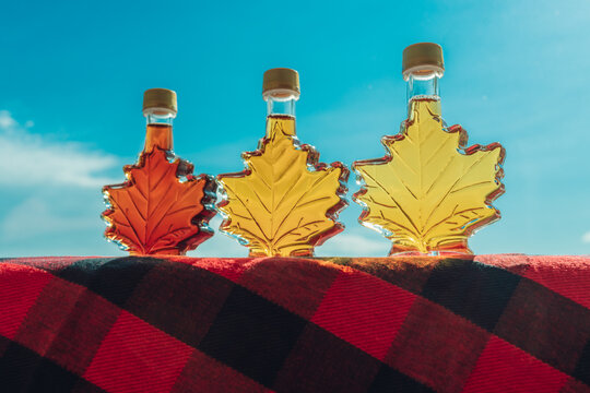 Maple syrup bottles in leaf shape outside. Selection of different grades of quality, golden, amber, dark for tasting gift from Quebec, Canada.