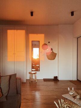 Modern stylish living room interior design concept. Cozy neutral Scandinavian living room in mild sunset light.