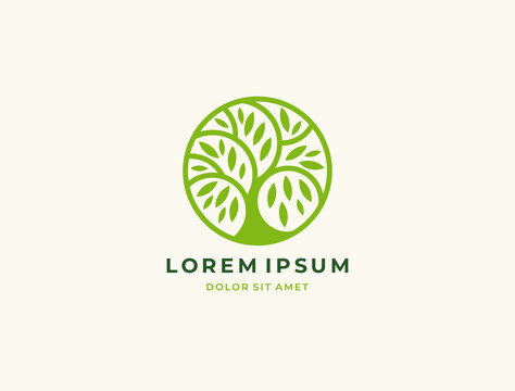 Abstract round tree logo icon. Universal creative floral symbol.  Vector tree icon sign.