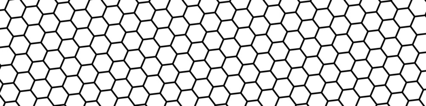 Honeycomb bee background. Honeycomb seamless pattern. Geometric hexagons background. Vector illustration