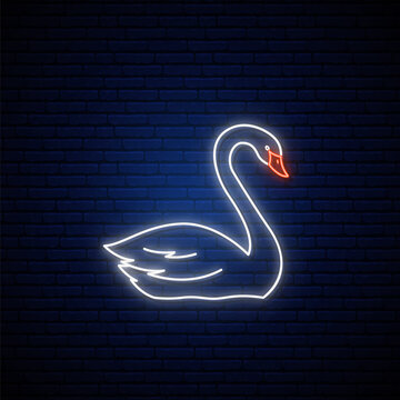 Neon Swan sign. Glowing white swan emblem in neon style. Bright light signboard. Vector illustration.