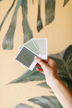 Unrecognizable crop female designer standing with green paper color samples in room with wall painted with monstera leaves