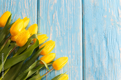 mother's day concept. tulips flower on pastel blue wooden background.