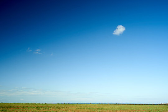Magnificent scenery of green meadow under blue sky on sunny day in countryside