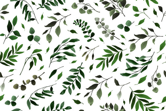 Seamless pattern with greenery leaves branch twig flora plants for floral watercolor wedding card, wallpaper, botanical foliage. Vector elegant herbal spring background