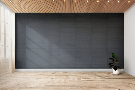 Rubber fig in a gray room. Contemporary Living Room Interior.
