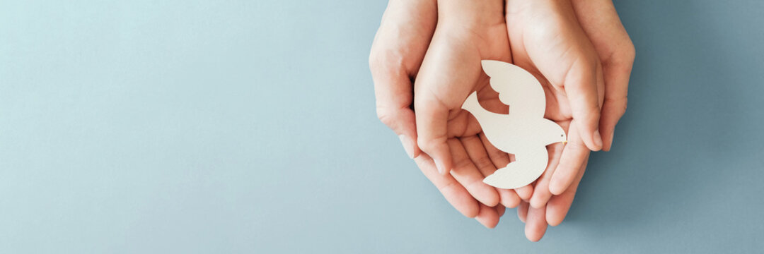 Adult and child hands holding white dove bird on blue background, international day of peace or world peace day concept, sustainable consumption, csr responsible business concept