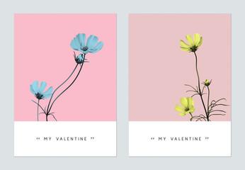 Minimalist botanical valentine greeting card template design, cosmos flowers