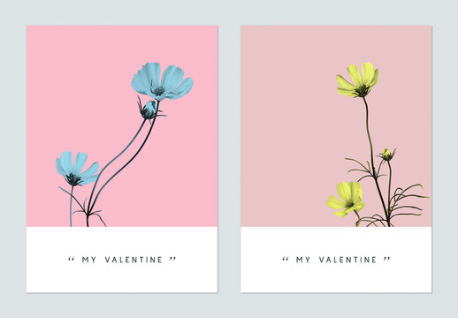 Minimalist botanical valentine greeting card template design, cosmos flowers