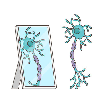 Mirror neuron funny performance with itself reflection view outline concept
