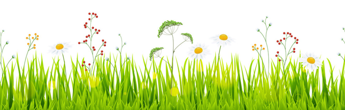 seamless floral grass panorama background