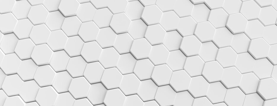 background hexagon pattern abstract background white panorama 3D Illustration