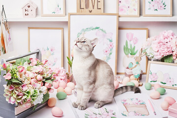 Easter cat with eggs and flowers. Gray kitten sitting on table. Spring greeting card Happy Easter....
