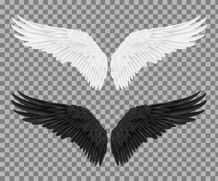 Set of angel and devil realistic wings, horns and halo. White and black wings