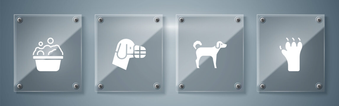 Set Paw print, Dog, muzzle and Pets bath. Square glass panels. Vector.
