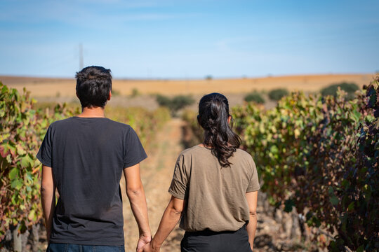Caucasian couple holding hands on a vineyard with blue sky on the background, in Alentejo